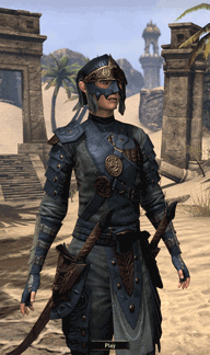 Sample Mercenary Armor